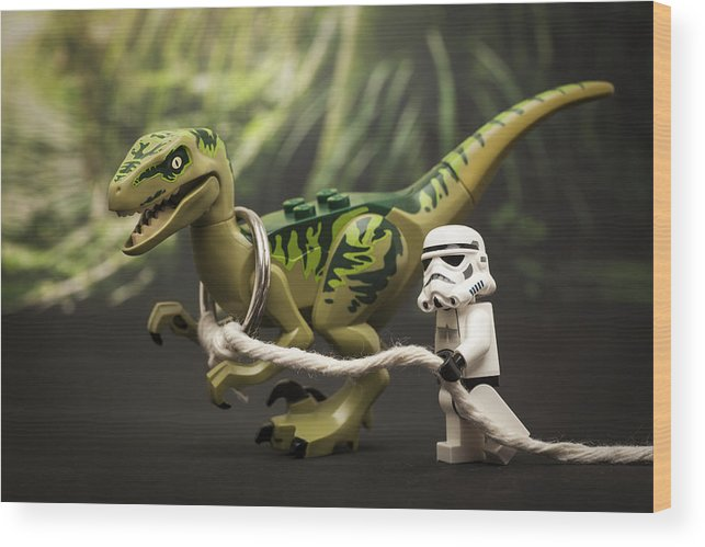 Lego Wood Print featuring the photograph Walkies by Samuel Whitton