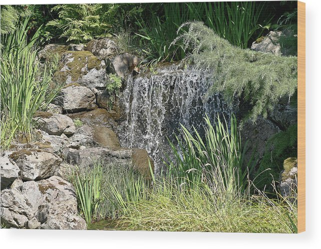 Pond Wood Print featuring the photograph Waterfall And Pond by Liz Santie