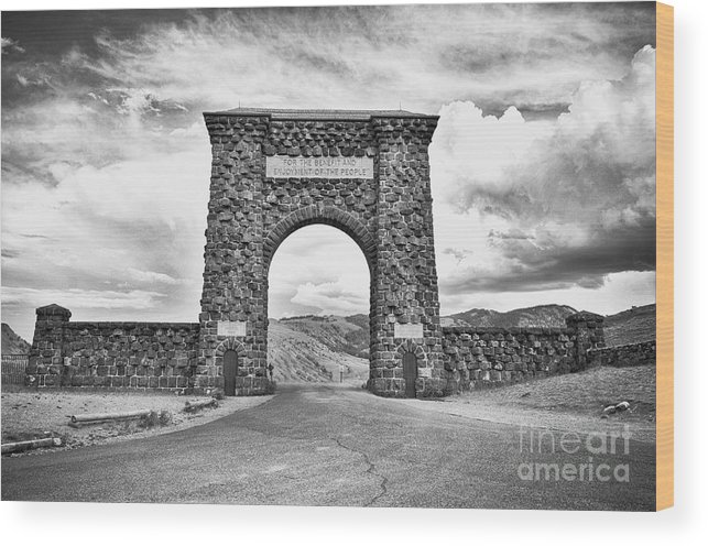 Black And White Wood Print featuring the photograph Welcome To Yellowstone Too by Rachel Barrett