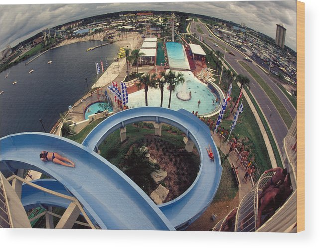 Waterslide Wood Print featuring the photograph Wet And Wild by Carl Purcell