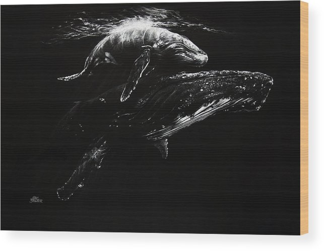 Whales Wood Print featuring the drawing Whales by Marc Brawner