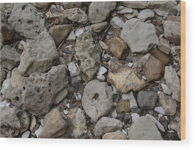 River Rock Wood Print featuring the photograph What The Tide Brings In by Tammy Mutka