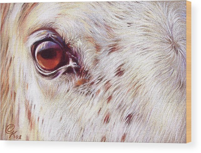 Horse Animal Equine Portrait Drawing Wood Print featuring the drawing White Horse Close-up by Elena Kolotusha