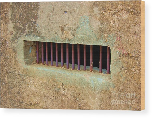 Jail Wood Print featuring the photograph Window To The World by Debbi Granruth