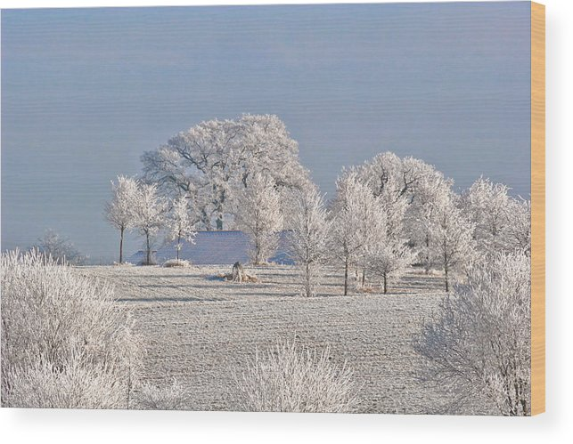 Canada Wood Print featuring the photograph Winter In Canada by Christine Till