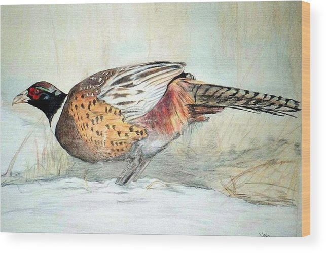 Ringneck Pheasant Wood Print featuring the painting Winter Ringneck by Debra Sandstrom