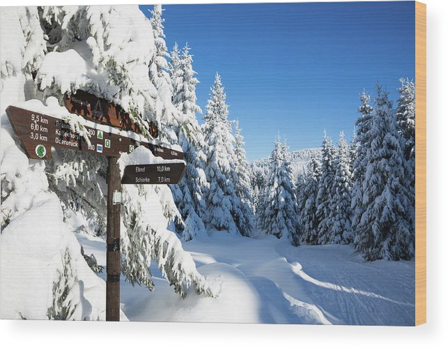 Winter Wood Print featuring the photograph winter way in the Upper Harz by Andreas Levi