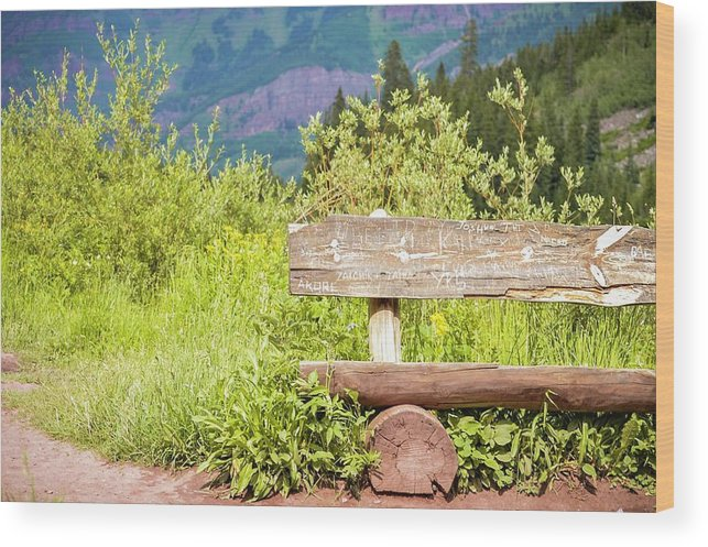 Bench Wood Print featuring the photograph Wooden Bench by Livia Pavelescu
