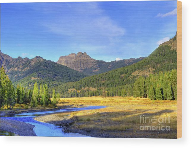 Autumn Wood Print featuring the photograph Yellowstone National Park Landscape by Juli Scalzi