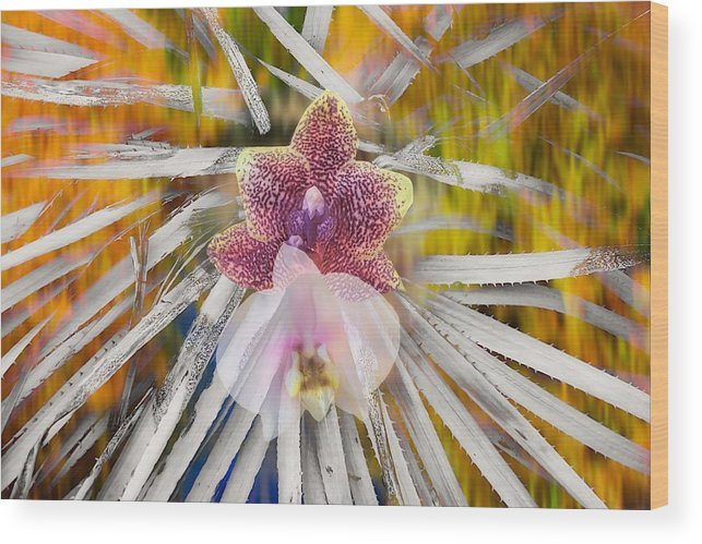 Abstract Wood Print featuring the photograph Yucca Dreaming Of Orchids by Jane Selverstone