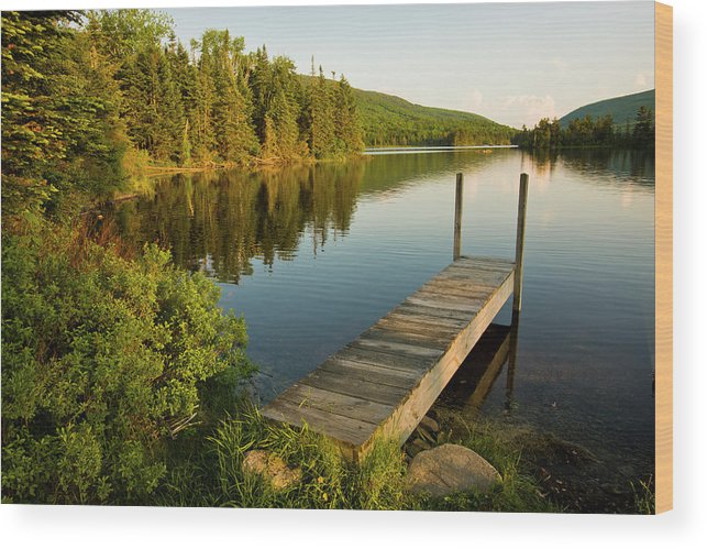 Tranquility Wood Print featuring the photograph A Small Dock In Long Pond In White by Danita Delimont