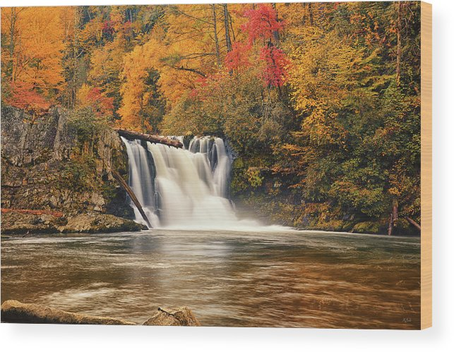 Abrams Falls Wood Print featuring the photograph Abrams Falls Autumn by Greg Norrell