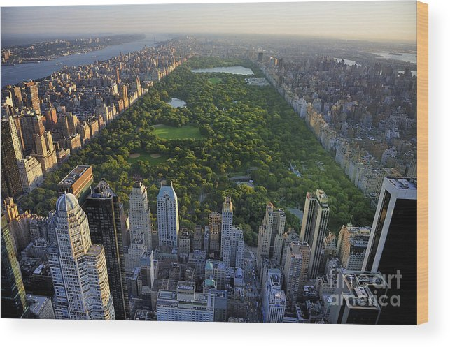 Usa Wood Print featuring the photograph Central Park Aerial View, Manhattan by T Photography