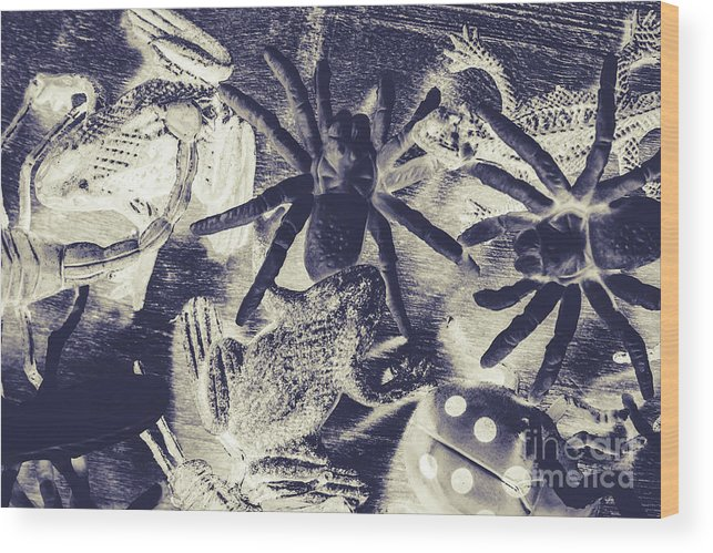 Wild Wood Print featuring the photograph Creatures Of The Night by Jorgo Photography - Wall Art Gallery