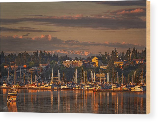 Friday Harbor Washington Wood Print featuring the photograph First Light by Thomas Ashcraft