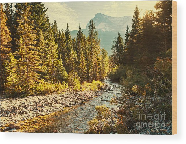 Serenity Wood Print featuring the photograph Glacier National Park, Montana by Galyna Andrushko