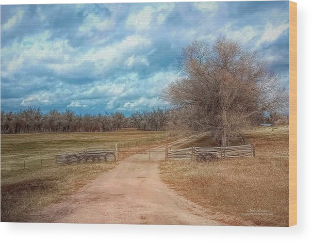 Colorado Wood Print featuring the photograph Home On The Range by Mike Braun