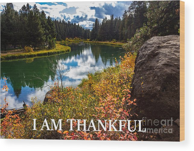 I Am Thankful Wood Print featuring the photograph I Am Thankful by G Matthew Laughton
