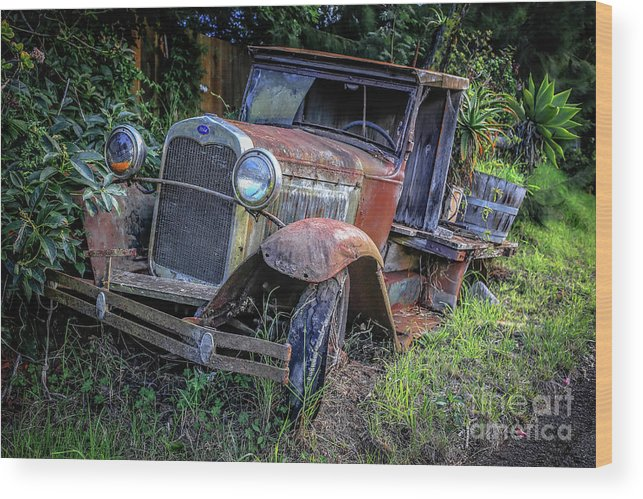 Maui Wood Print featuring the photograph Old Model Aa Ford In The Jungle 2 by Edward Fielding