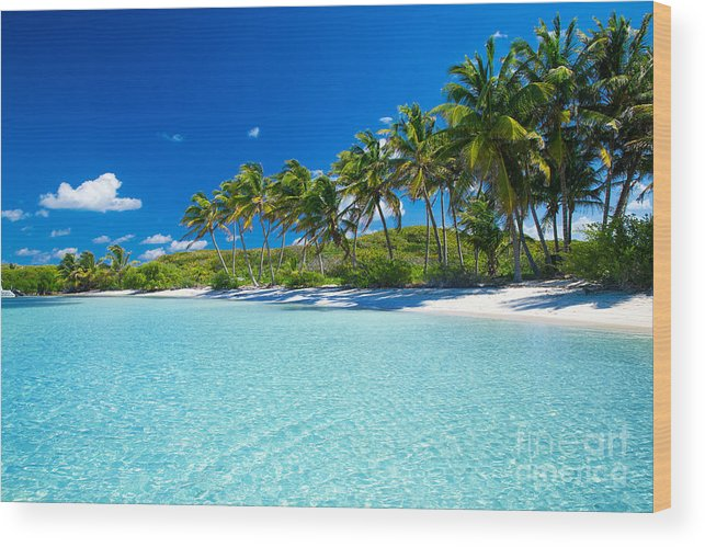 Palm Wood Print featuring the photograph Palm And Tropical Beach by Akugasahagy