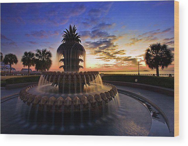 Tranquility Wood Print featuring the photograph Pineapple Fountain In Charleston by Sam Antonio Photography