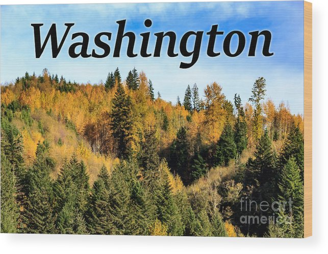 Randle Wood Print featuring the photograph Randle Washington In Fall 02 by G Matthew Laughton