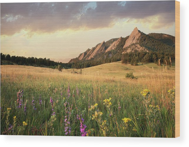 Tranquility Wood Print featuring the photograph Scenic View Of Meadow And Mountains by Seth K. Hughes