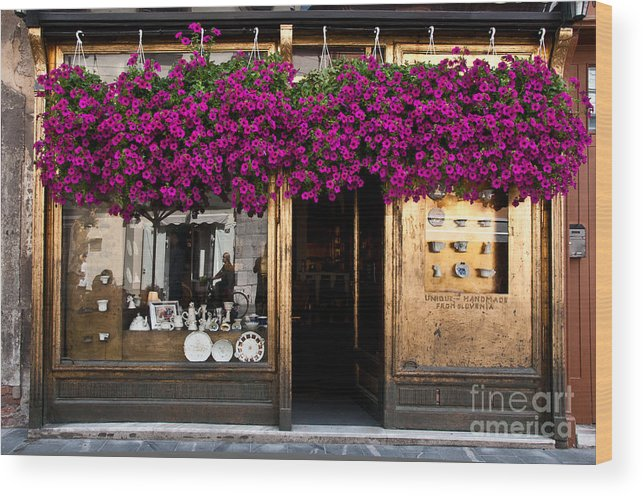 Slovenia Wood Print featuring the photograph Showcase Full Of Purple Flowers In by Cmartinezcano
