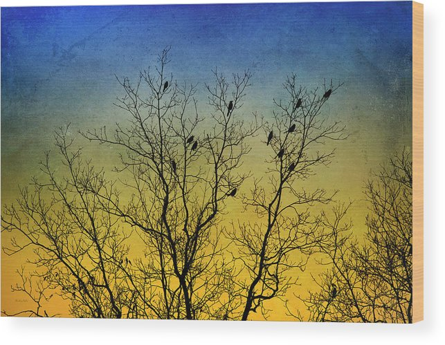 Birds Wood Print featuring the mixed media Silhouette Birds Sequel by Christina Rollo