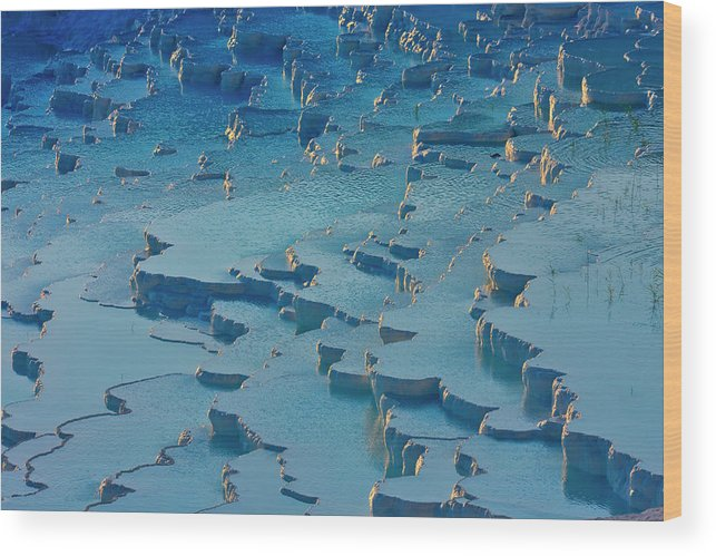 Agua Wood Print featuring the photograph Tourist On Travertine Terraces by Keren Su