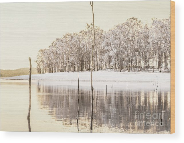 Landscape Wood Print featuring the photograph Winters Edge by Jorgo Photography - Wall Art Gallery