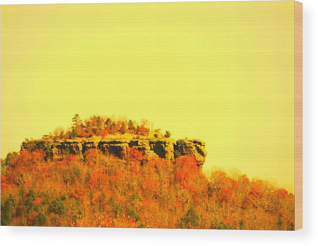 Landscape Wood Print featuring the photograph Colors Of Fall by Lisa Johnston
