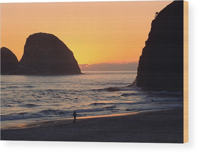 Landscape Wood Print featuring the photograph Figure On Seastack by Lynard Stroud