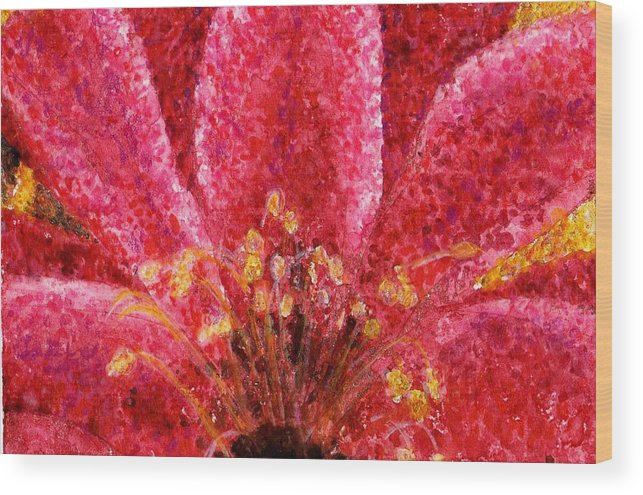 Watercolor Wood Print featuring the painting Strawberry Hedgehog Cactus Blossom by Cynthia Ann Swan