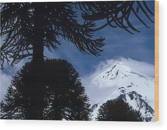 Andes Wood Print featuring the photograph Volcano In Patagonia, Argentina by Peter Essick
