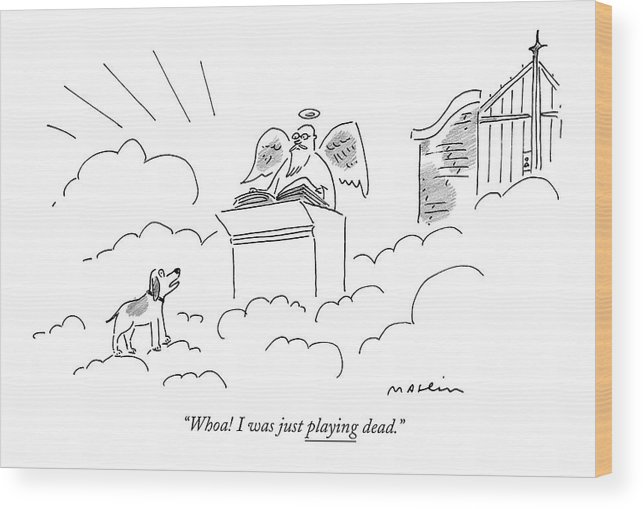 Death Games Heaven Dogs Talking.  (dog Talking To Saint Peter At The Pearly Gates.) 120741 Mma Michael Maslin Wood Print featuring the drawing Whoa! I Was Just Playing Dead by Michael Maslin