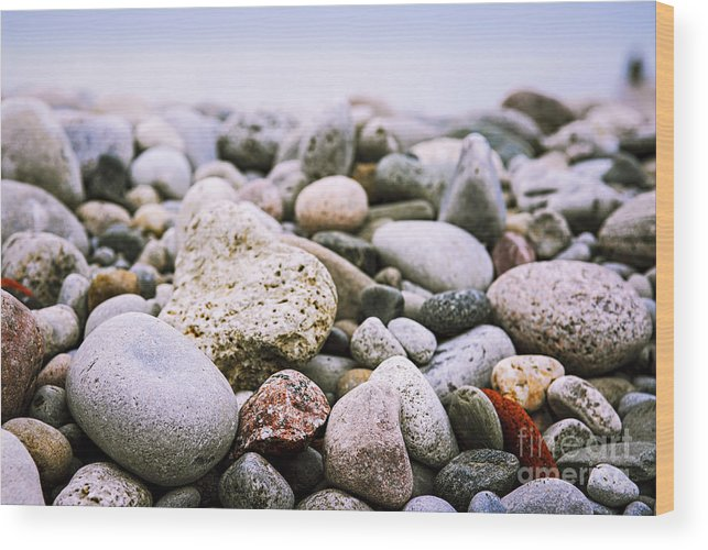 Rock Wood Print featuring the photograph Beach Pebbles by Elena Elisseeva