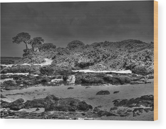 Honolulu Wood Print featuring the photograph Honolulu Hi 4 by Richard J Cassato