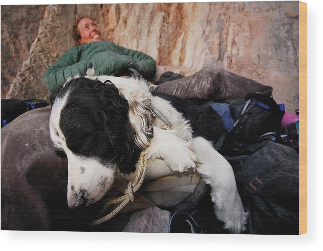 Adult Wood Print featuring the photograph A Climber And Her Dog Lay by Rich Wheater
