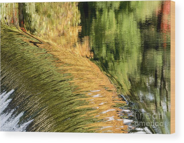 Fall Wood Print featuring the photograph Autumn Reflections 2 by Ilene Hoffman