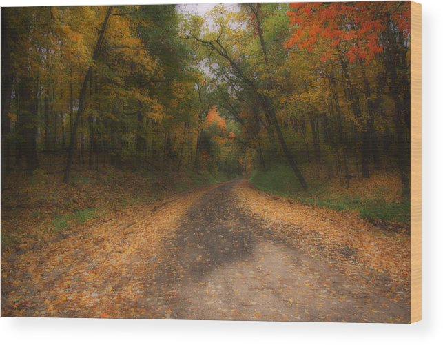 Michigan Wood Print featuring the photograph Autumn Road by Gary Richards
