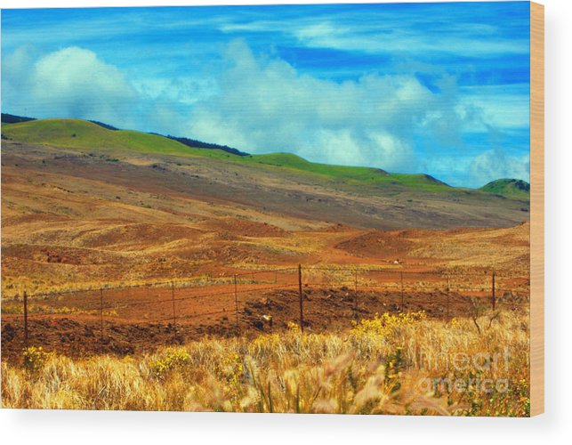 Barbed Wire Wood Print featuring the photograph Barbed Wire Fence by Paulette B Wright