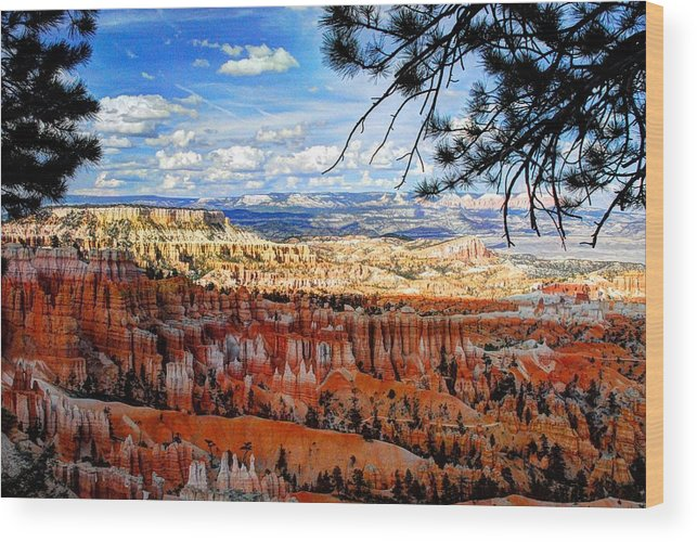 Bryce Canyon Wood Print featuring the photograph Bryce Canyon Utah by Donna Bevington