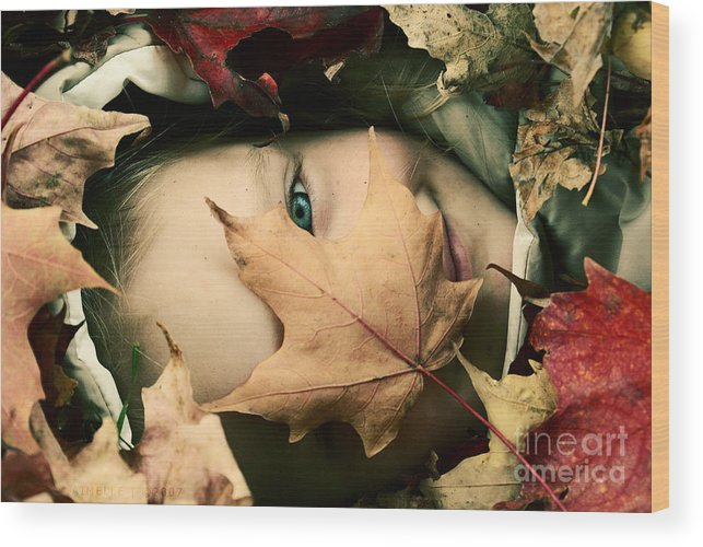 Autumn Photography Prints Wood Print featuring the photograph Camouflage by Aimelle