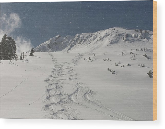 Alta Wood Print featuring the photograph Cardiff Fork, Big Cottonwood Canyon by Howie Garber
