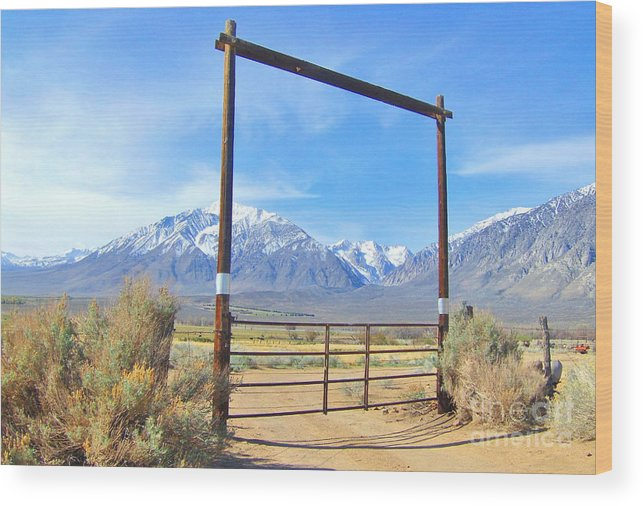 Sky Wood Print featuring the photograph Close Gate by Marilyn Diaz