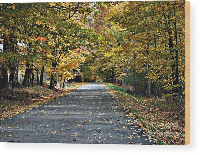 Country Lane Wood Print featuring the photograph Country Lane by Tim Hauser