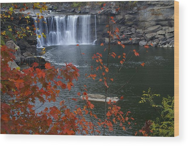 Cumberland Falls Wood Print featuring the photograph Cumberland Falls by Bj Hodges