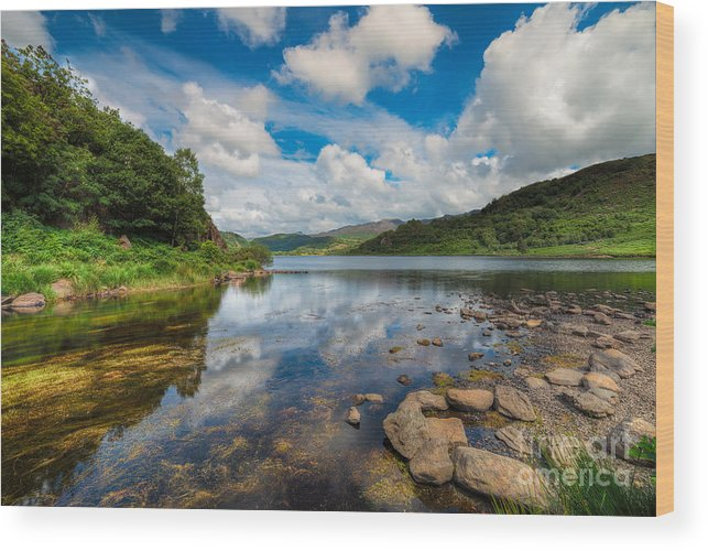 Cwellyn Lake Wood Print featuring the photograph Cwellyn Lake Wales by Adrian Evans