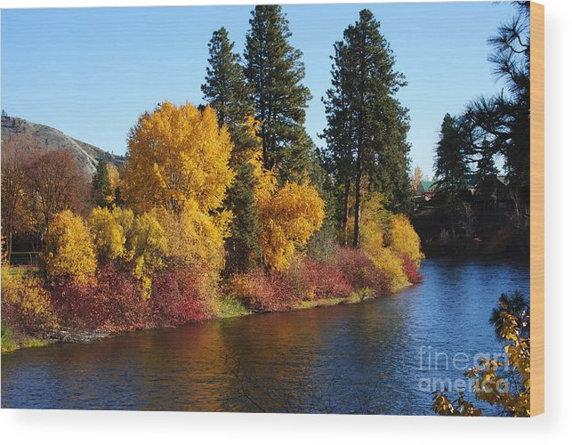 Wood Print featuring the photograph Fall Leavenworth Washington by Brandon Finister